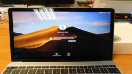 Notebook Apple MacBook 12 (2017) M3 (A1534)