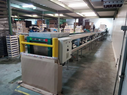 Technological line for packaging and packaging of juice (sorter, grinding team and juice extraction with a decander)